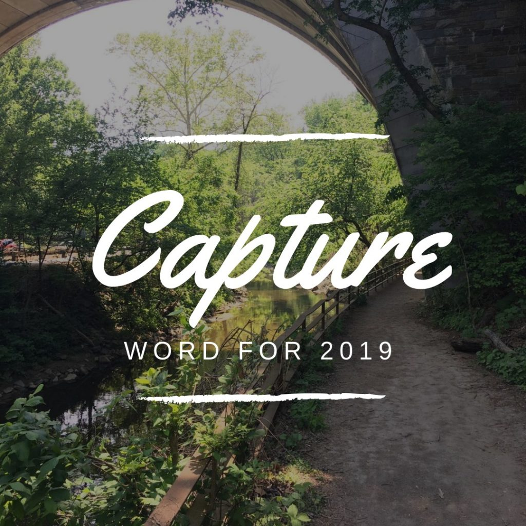 Capture word for 2019 not a pedestrian life